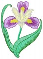 Beautiful Flowers - Iris for 100mmx100mm, 130mm x180mm, 150mmx150mm, and 200mmx200mm hoops.