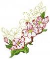 Dogwood Blossom #10