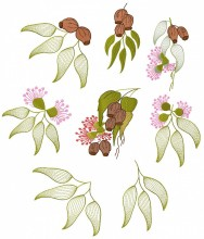 Australian Gumnuts and leaves. Set of eight designs for 150mmx150mm hoops