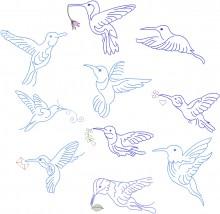 Hummingbird Flight.  Set of 10 designs for 100x100mm hoops.
