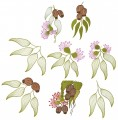 Australian Gumnuts and leaves. Set of eight designs for hoop sizes 100mmx100mm, 130mmx180mm and 150mmx150mm hoops