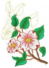 Dogwood Blossom #9.