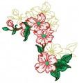 Dogwood Blossom #4